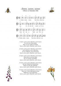 Text und Noten zum Kinderlied Summ, summ, summ - Bierchen summ herum